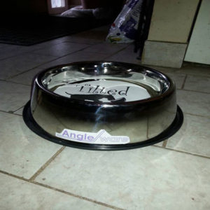 Large breed Tilted Pet Bowl